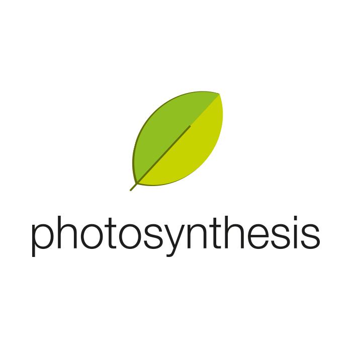 Фотосинтезис